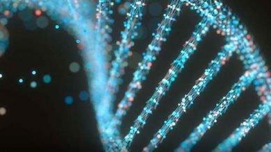 تاثیر اختلالات ژنتیکی بر ناباروری زنان