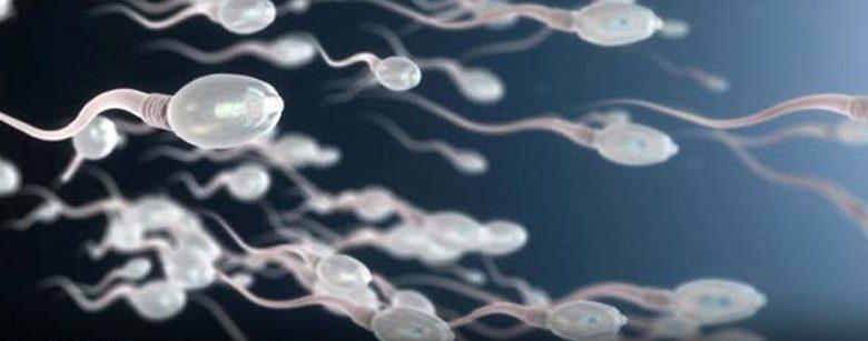 تحرک اسپرم چگونه بر باروری تأثیر می گذارد؟