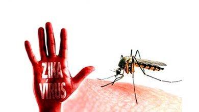 ویروس زیکا و بارداری